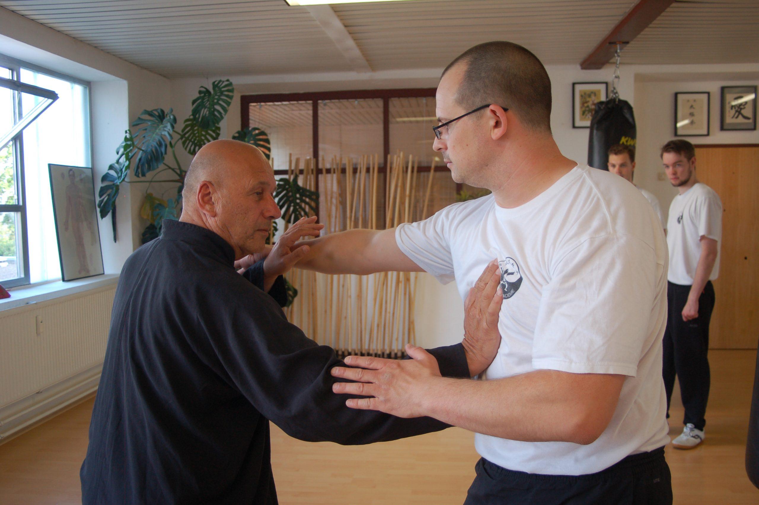 Tui Shou Workshop - Pushing Hands 推手 in Kelheim
